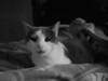 lourice and diana IMG_0284
