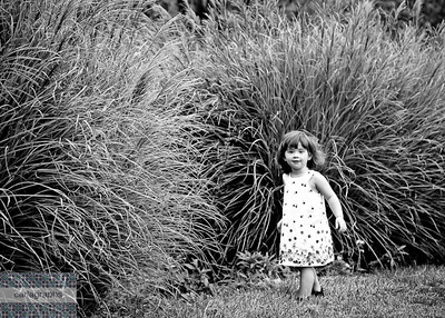 In the Tall Tall Grass bw (1 of 1)