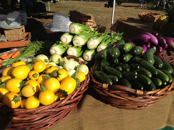 Farmer's market - can you tell food seems to be a recurring theme so far?