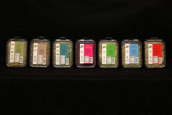 I like the bright colors against the black background. These are Fullei Fresh sprouts. I also designed the labels.