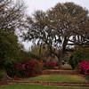 Mepkin Abbey Gardens III