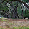 Entrance to Mepkin Abbey, near Moncks Corner, SC
