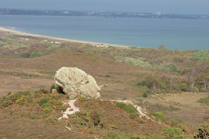 The Agglestone, looking from this angle like an African head sculpture.