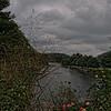 Flowering Bridge - Lake Lure