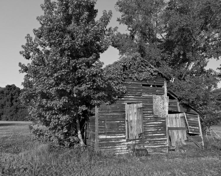 Bartow Barn