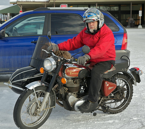 This is March 25th 2012 in Fairbanks Alaska. This man and his dog were out getting groceries. It had  warmed up to 24 degrees and for them that was riding weather.
