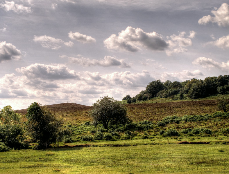 From the green in front of Holly Hatch Cottage looking across to Ragged Boys Hill, and to the right the hill and earthworks where the Royal Hunting Lodge had been located.