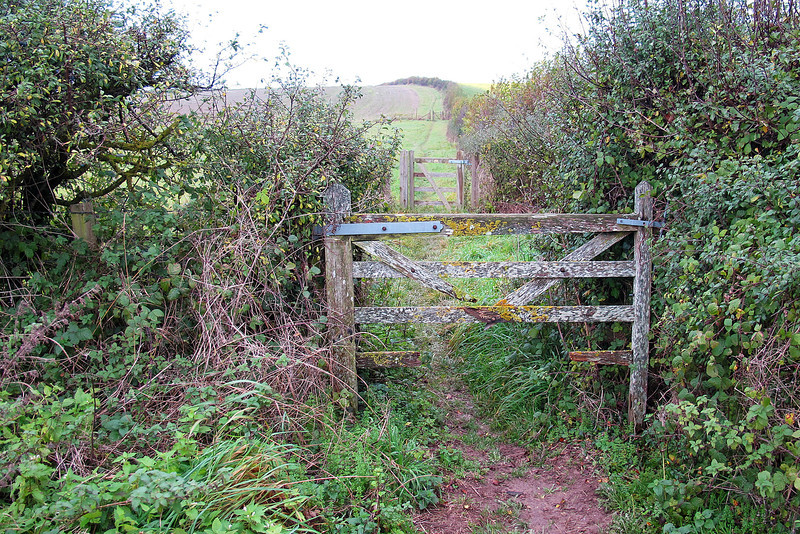 A gate which could do with some attention.