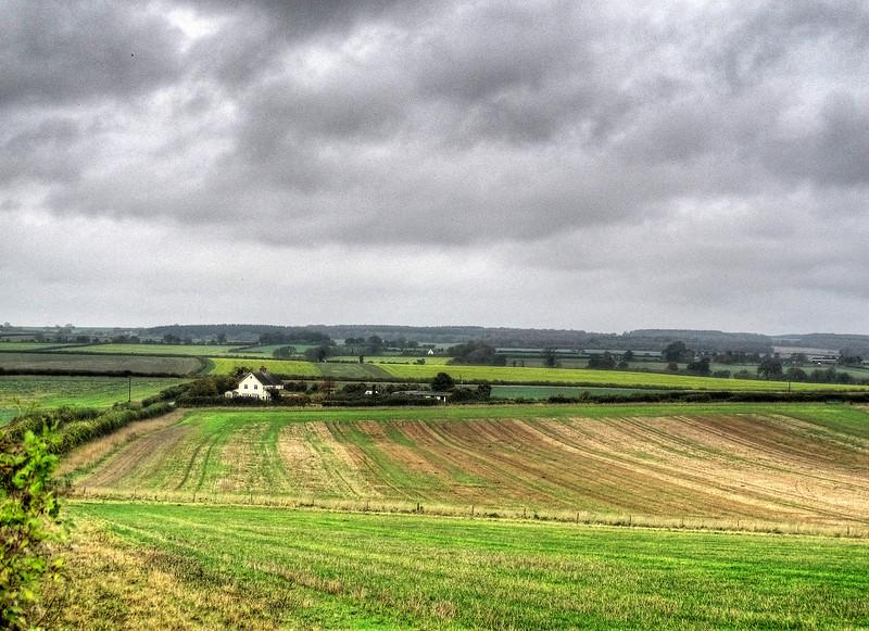 Lambing Cottage, near Whitchampton