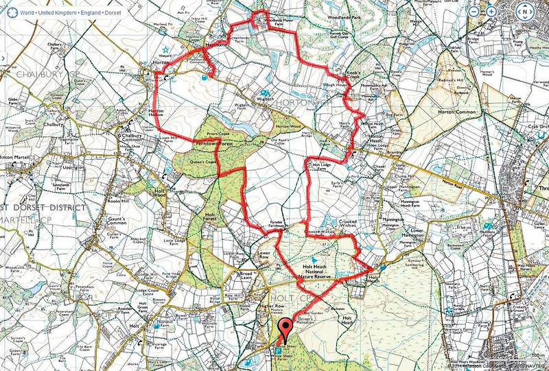 A 12.6 mile mainly circular walk from Whitesheet Plantation , Holt, Dorset