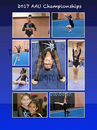 AAU State Championship Collages