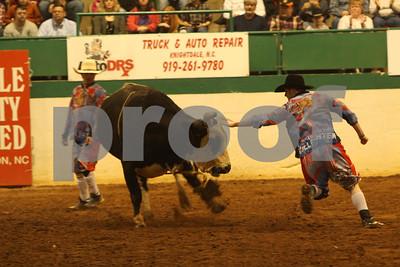 Bull Sat 2 (91)