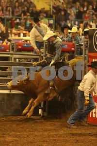 Bull Sat 2 (102)