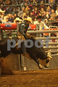 Bull Sat 2 (70)