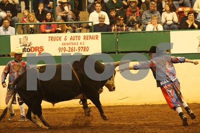 Bull Sat 2 (92)