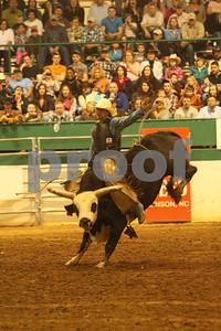 Bull Sat 2 (80)
