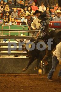 Bull Sat 2 (54)