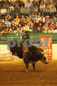 Bull Sat 2 (78)