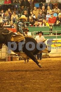 Bull Sat 2 (75)