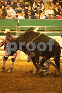 Bull Sat 2 (64)