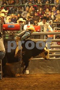 Bull Sat 2 (69)