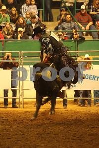 Bull Sat 2 (58)