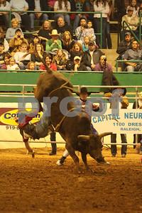 Bull Sat 2 (52)