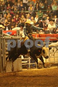 Bull Sat 2 (72)
