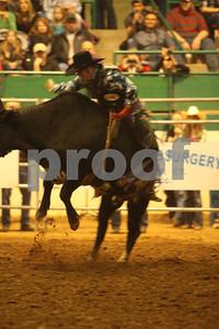 Bull Sat 2 (59)