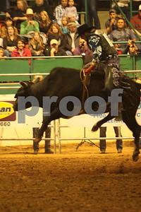 Bull Sat 2 (60)