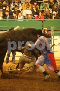 Bull Sat 2 (66)