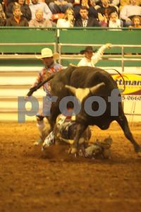 Bull Sat 2 (63)