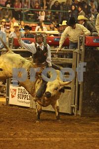 Bull Sat 2 (43)