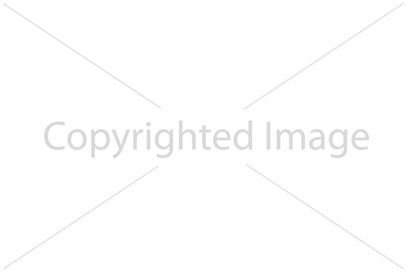SmugMug - Image Copyrighted - horizontal - 10% opacity