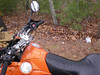 ilmostro's placement of #27, off of Flat Creek Rd, just north of Suches, Georgia, picked up 02.03.08