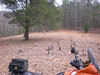 the view from ilmostro's placement of #27, off of Flat Creek Rd, just north of Suches, Georgia, picked up 02.03.08