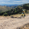 Climbing Bisbee dirt roads for more expansive views.