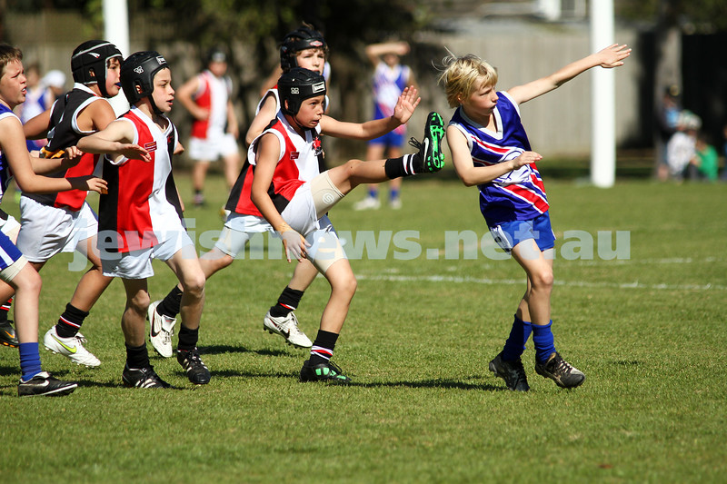 28-8-11. AJAX U 11 Comets grand final v East Malvern. Photo: Peter Haskin