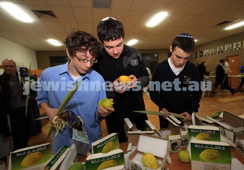 29/9/09. The annual etrog selection at Mizrachi. From left: David Rubin, Shuki Wyman, Gideon Rubin. photo: peter haskin