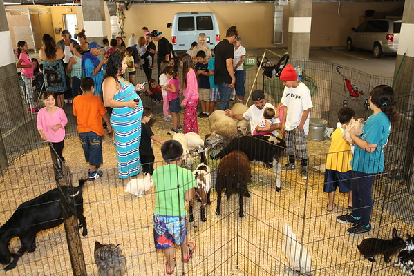 ALSJ Petting Zoo at San Jose Family Shelter