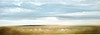 Scape- 242 by Haxton, AEKH13-6, 20x60 on canvas