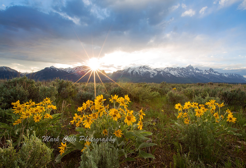 Grand Teton Range at sunset with sun star