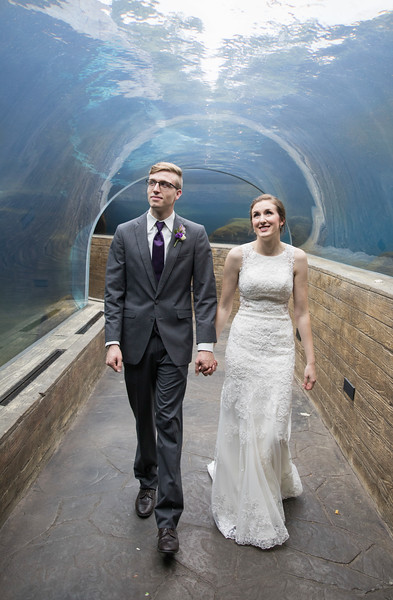 Wedding at St. Louis Zoo