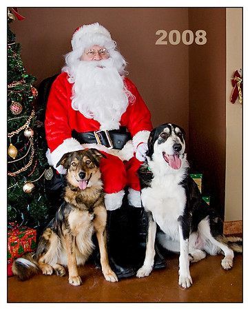 Kavi and Daisy with Santa in 2008 - I took this at my vet clinic and it seems to be an annual tradition now.