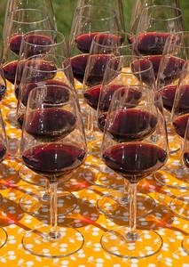 Wine tasting, Leda D'itteri Winery Sardinia