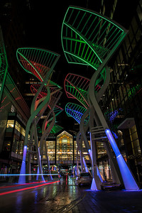 The 10 stylized trees at Bankers hall with changing coloured lights.
