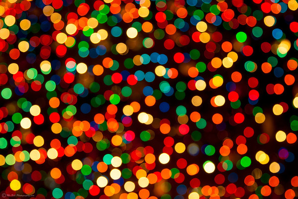 Xmas tree lights