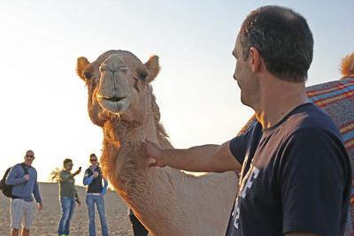 Abu Dhabi 2014/15 Christmas Day Desert Safari