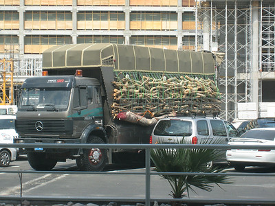 A huge truck driven over from Saudi for the exhibition.  Maybe the owner is ready for a *serious* bbq judging by the amount of firewood on the side (and the carpet).