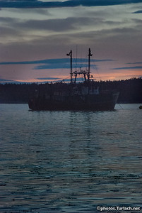 Bass Harbor at sunset